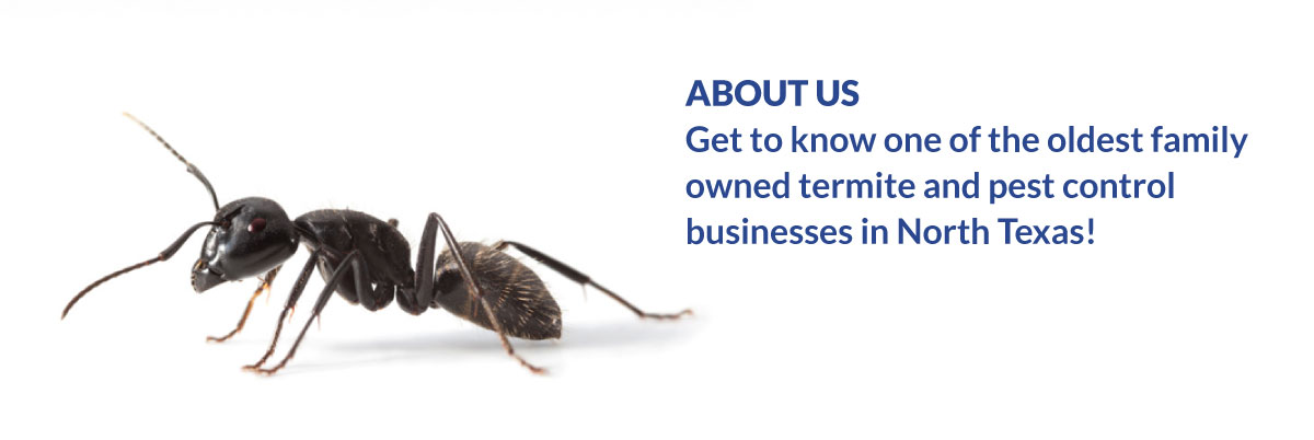 Get to know one of the oldest family-owned termite and pest control businesses in North Texas!